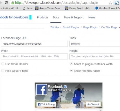 lấy mã code facebook